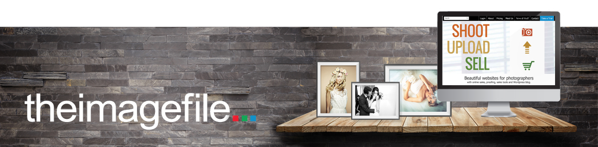 Theimagefile banner