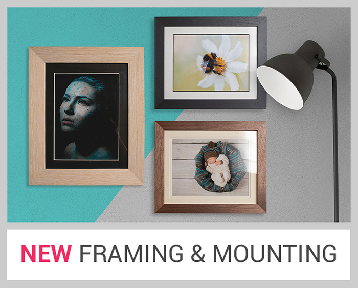 Framing and Mounting