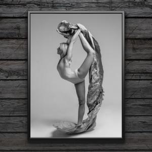 fine art prints offer